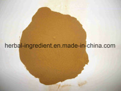 Climbing Groundsel Herb (P. E) Extract 5: 1~20: 1 for Foods Supplement