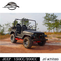 Best Price of Funny UTV 200cc CVT for Teanage