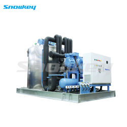 The Largest Capacity 37.5 T/D Liquid Slurry Ice Making Machine Used on Land