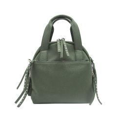 Trendy Luxury Quality Designer Women Handbag Gender and Soft Material Lady Handbag