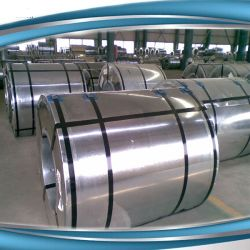 Oil Rolled Steel Electro Galvanize Code 10152 Coil Rolled