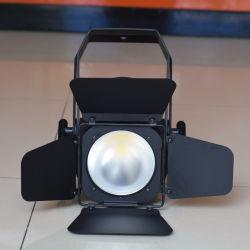 Professional CRI> 90ra DMX512 Ww&Cw 200W LED Studio Light for Photography