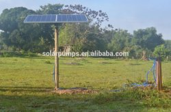 Commercial Brushless DC Submersible Solar Water Pump Fountain
