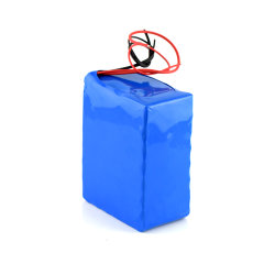 Customized 24V Li Ion Battery Pack for Electric Bike