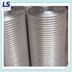 China Stainless Steel Welded Wire Mesh, Stainless Steel Welded Wire ...