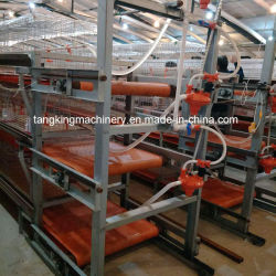 Low Price professional Design Poultry Cage Equipment