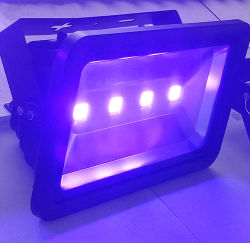 UV 10W~200W 405nm LED Flood Light