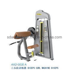 Axd-5030 Biceps Curl Fitness Equipment Sport Machine with Ce Approved