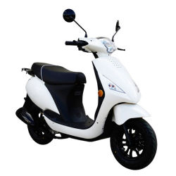 50cc 125cc 150cc EEC Gas Scooter Motorbike Moto Mini Scooter Motorcycle