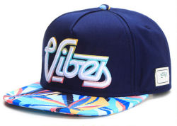 3D Embroidered with Silk Printing Snapback Cap