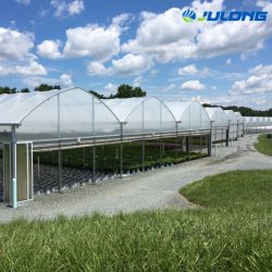 Factory Wholesale Multi Span Plastic Film Greenhouse for Agriculture Poultry Seed Breeding