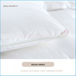 100% Cotton/Sill Cover White Goose /Duck Down Quilt/Duvet/Comforter Sets for Hotel/Home