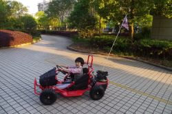 EPA Wholesale off Road 80cc Kid's Outdoor Go Kart for Sale
