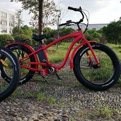 500W/750W Bafun Motor Fat Tire Wholesale Electric Bicycle