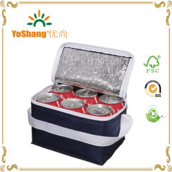 cbdec4f286a8 Wholesale Cheap Disposable Non Woven Beer Can Cooler Bag