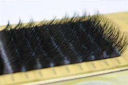 Whlolesale B/C/D/J Curl 1 Trays Natural Mink Eyelash Extension Artificial Fake False Eyelashes