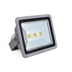 150W Warm White Outdoor LED Flood Light with Best Price-Dlfl035
