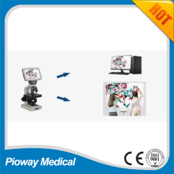 Video Microscope Digital Microscope LCD Microscope and Combined Stereo Microscope (NLCD-AS1)