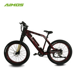 Cool Man Style Electric Bicycle Mountain Ebike for Sale