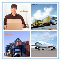 China Dhl Shipping To Kuwait, Dhl Shipping To Kuwait