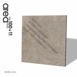 600*600 Cement Look Building Material (SS-H2)
