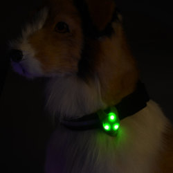 LED Pet Safety Light Flashing Dog Light