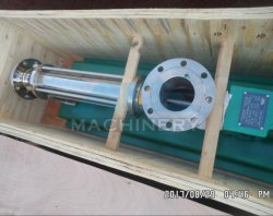 Wholesale Stainless Steel Water Pump Single Screw Pump (ACE-LGB-10)