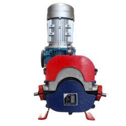 Heavy-Duty Abrasion Resistance Industries Hose Pump, Cement Mortar Slurry Peristaltic Hose Pump