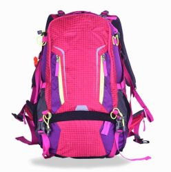 Factory Custom Colour Sports Backpacks, Sports Bag Sh-16042907