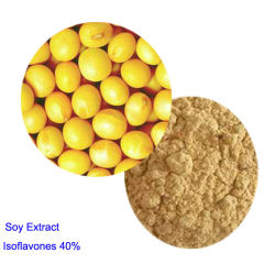 High Quality Soybean Extract Soy Isoflavone