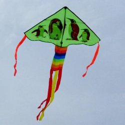 Promotion Advertising Festival National Day Fans Air Pipe Kite Wind Chime