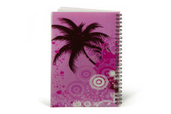PP Cover Bulk Spiral Diary, Students Stationery Notebook