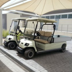 Battery 2 Seat Electric Cargo Car (Lt-A2. H8)