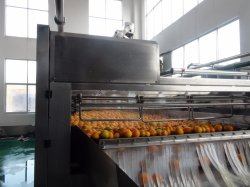 2-50TPH concentrated juice orange processing machinery
