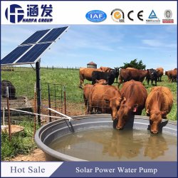 DC Brushless Motor Submersible Deep Well Pump Home Use Garden Irrigation Price Solar Water Pump for Agriculture
