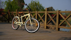 En15184 250W Fat Tire Used Classic Cruiser Electric Bicycle for Sale with Motors for Bicycles