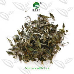 100% Organic Good Quality with Good Price White Tea Bai Mu Dan