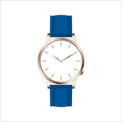 Fashion Sport Quartz Gift Stainless Steel Customized Factory Watch (DC-303)
