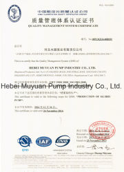 Filter Press Feed High Pressure Centrifgual Slurry Pump