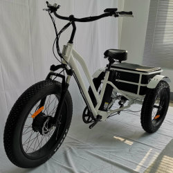 d6b3f4c3482 China Electric Tricycle Used, Electric Tricycle Used Manufacturers ...
