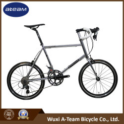Sample-20 Years Bicycle Factory High Quality Bikes