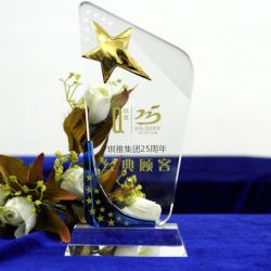 Sports Champions Trophy Oscar Costumized Logo Words Trophies Awards Gift