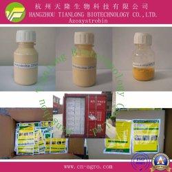 Azoxystrobin (95%TC 25%WDG, 50%WDG, 250SC)-Fungicide
