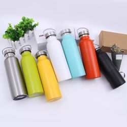 500ml Wide Mouth Food Grade Stainless Steel Sport Water Bottle with PP Lid (SH-ST14)