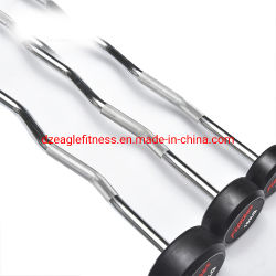 Wholesale Commercial for Sports Gym Equipment Rubber Weight Lifting Barbell Weight