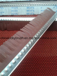 High Quality Sand Paper for Sand Machine Brush (YY-170)