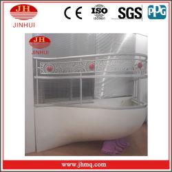 Sanya Beauty Crown Original Design Louver Window Curtain Wall Skylight (Jh168)