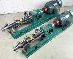 Factory Direct Sale Screw Pump for Slurry Mud Irrigation