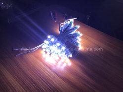 IP67 Waterproof DC12V 9mm 0.2W Pixel LED