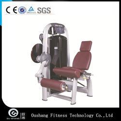 Leg Extension Indoor Gym Equipment